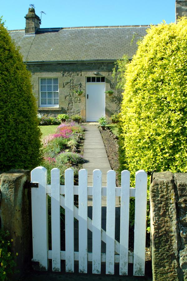 English cottage & garden