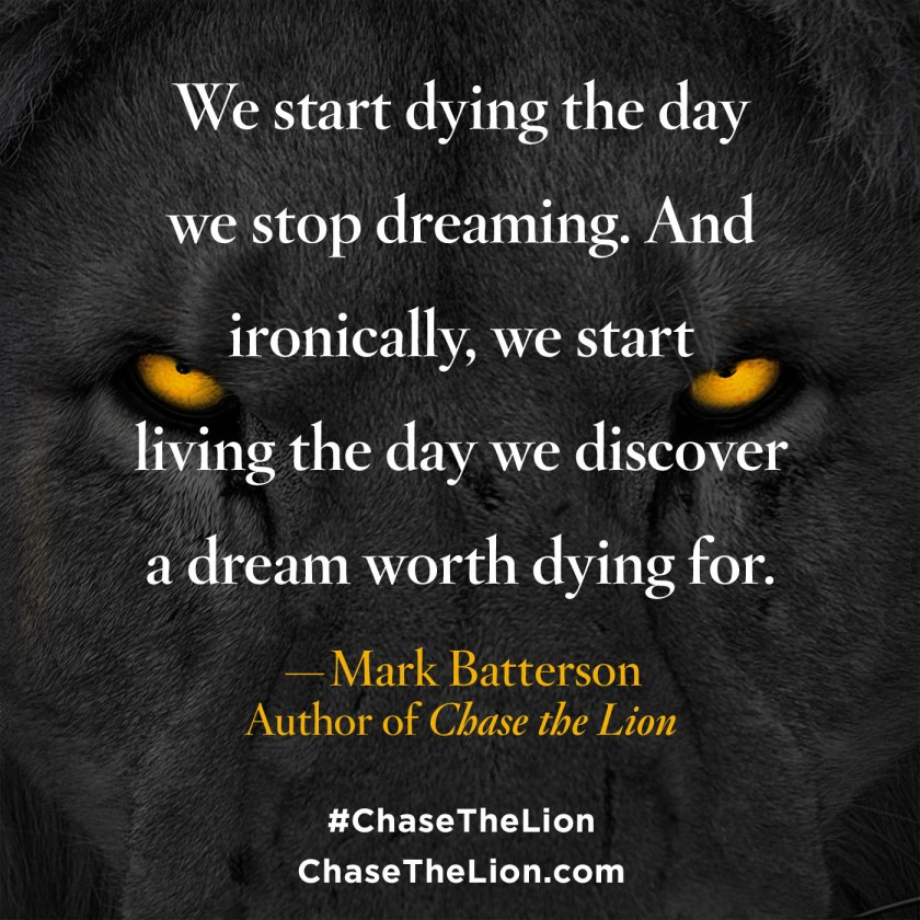 chase-the-lion_pinwords_2-1